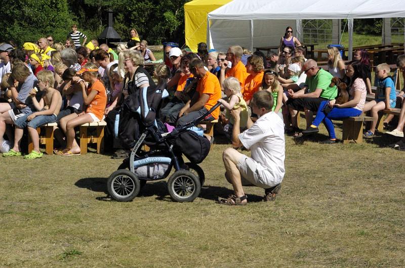 Lasterikaste perede huvide kaitse
